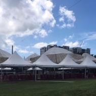 empty Greenfield market